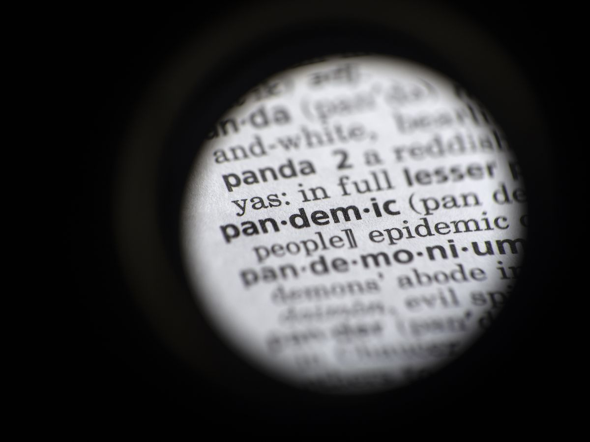 'Pandemic' dominates search terms and becomes Word of the Year