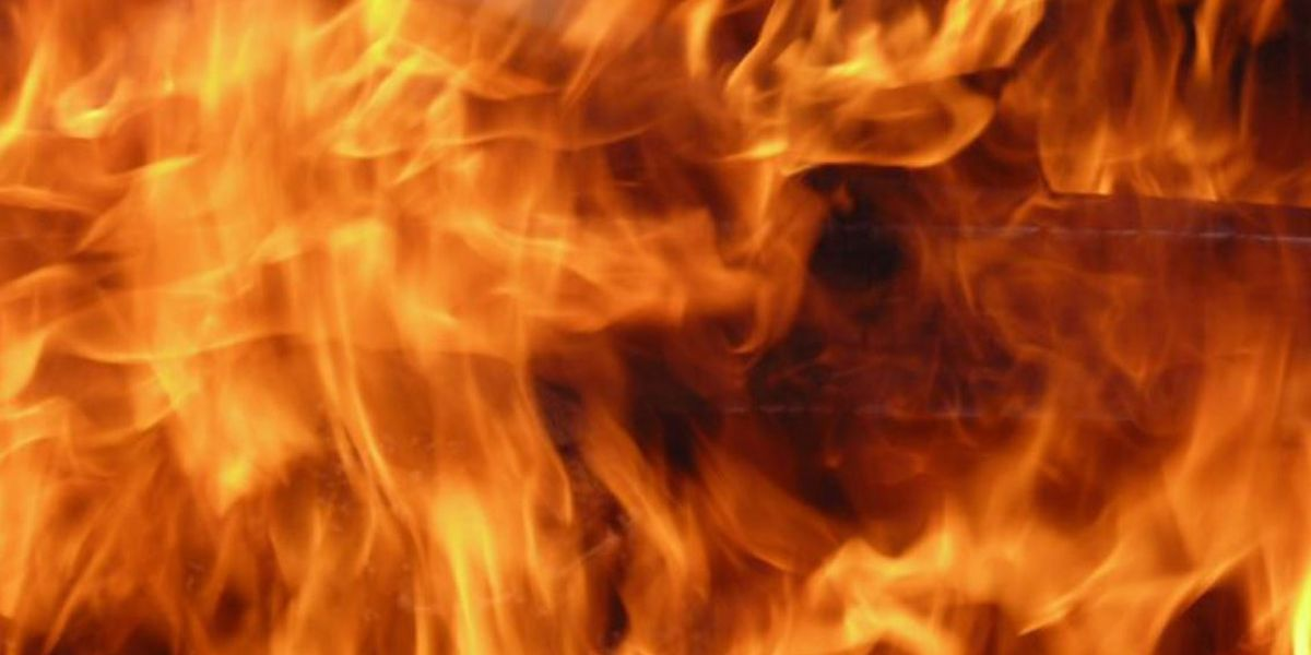 Firefighters rescue person through window of burning structure