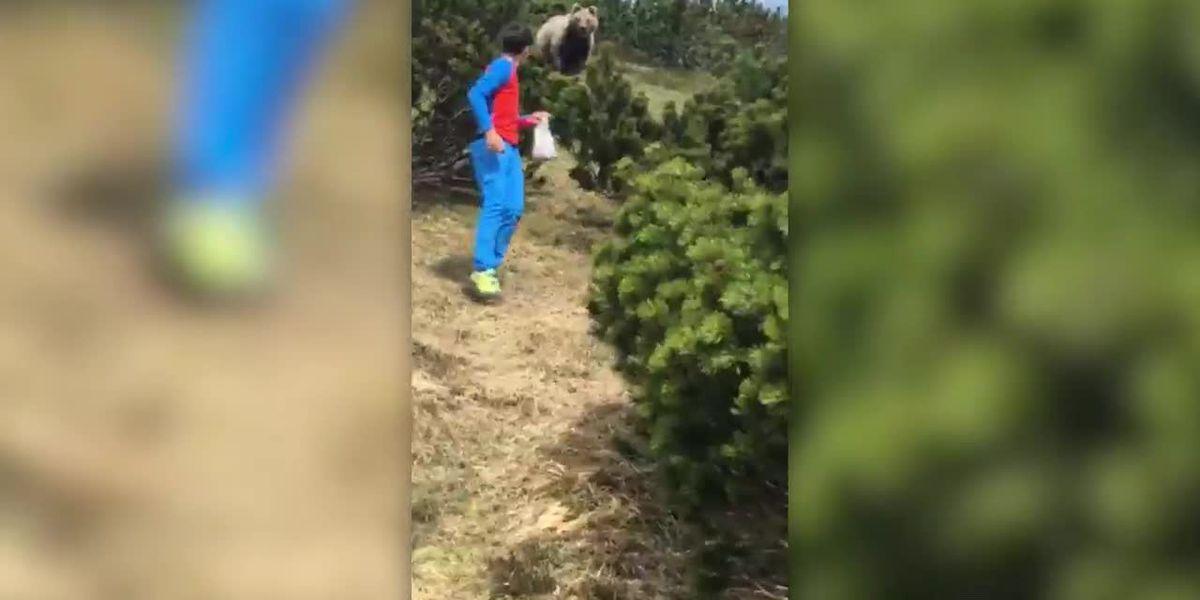 WATCH: Bear follows boy through mountains of Italy