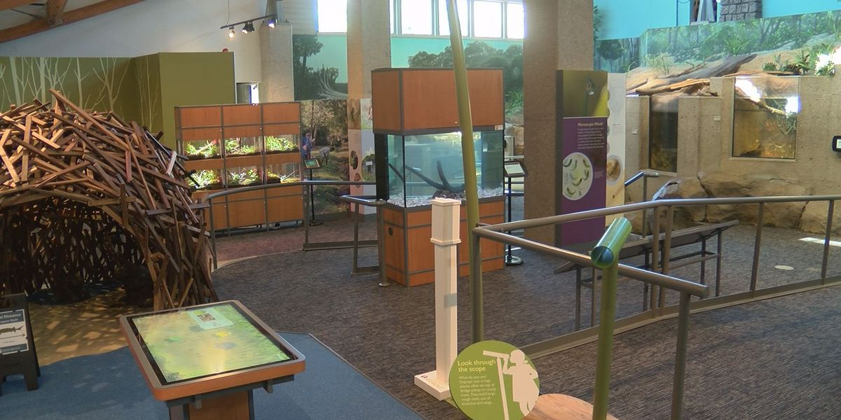 A look inside the renovated Robins Nature Center