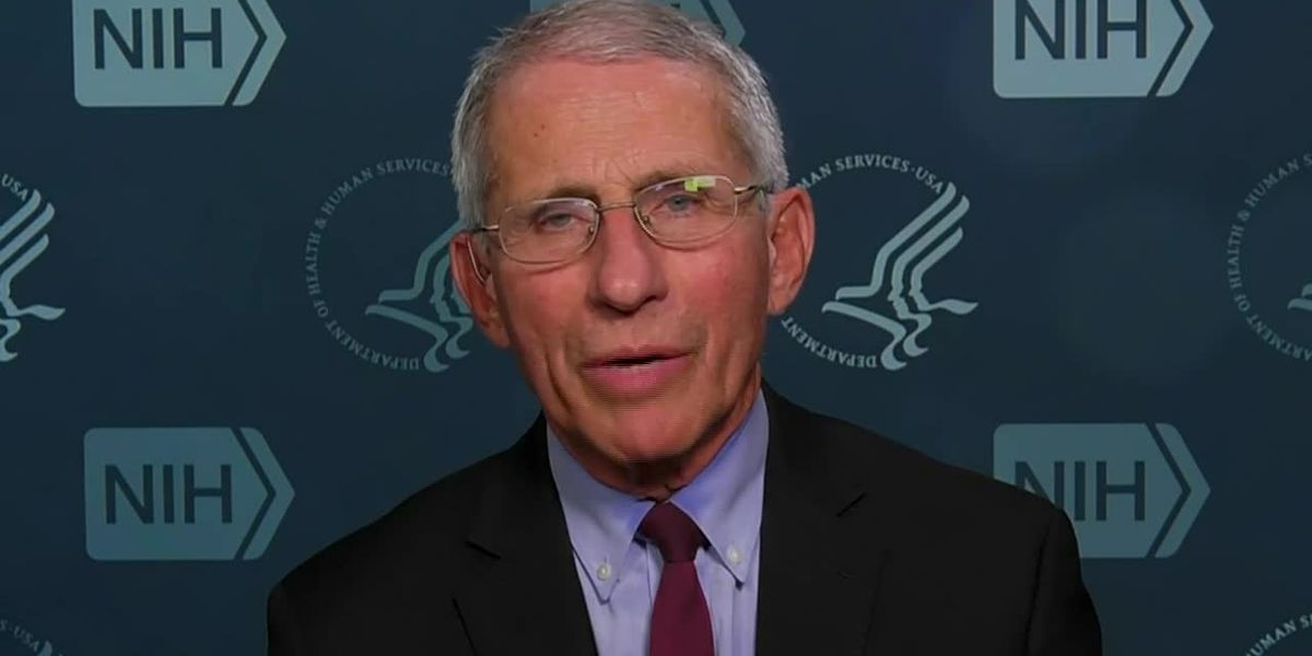 Fauci: Everyone should stay home to avoid coronavirus