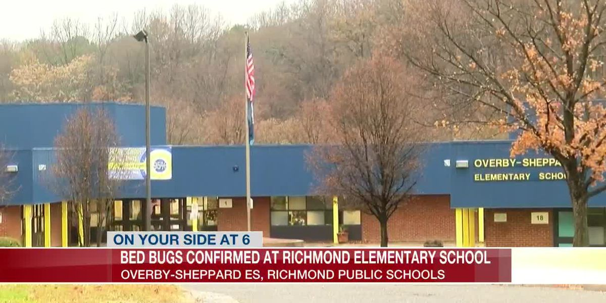 'They had students' coats and backpacks in plastic bags.' Multiple cases of bed bugs confirmed at RPS elementary school
