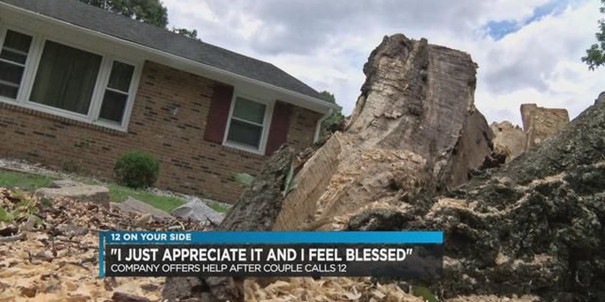 Company offers help to remove tree that fell on couple's yard