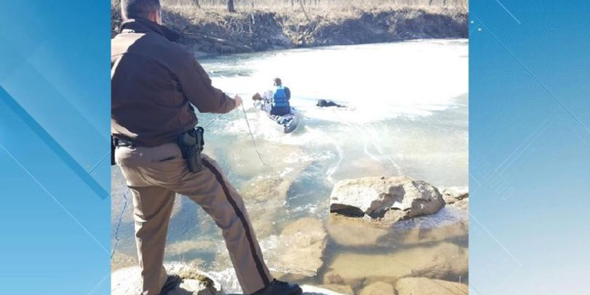 Dog stranded in Va. creek rescued, returned to owners