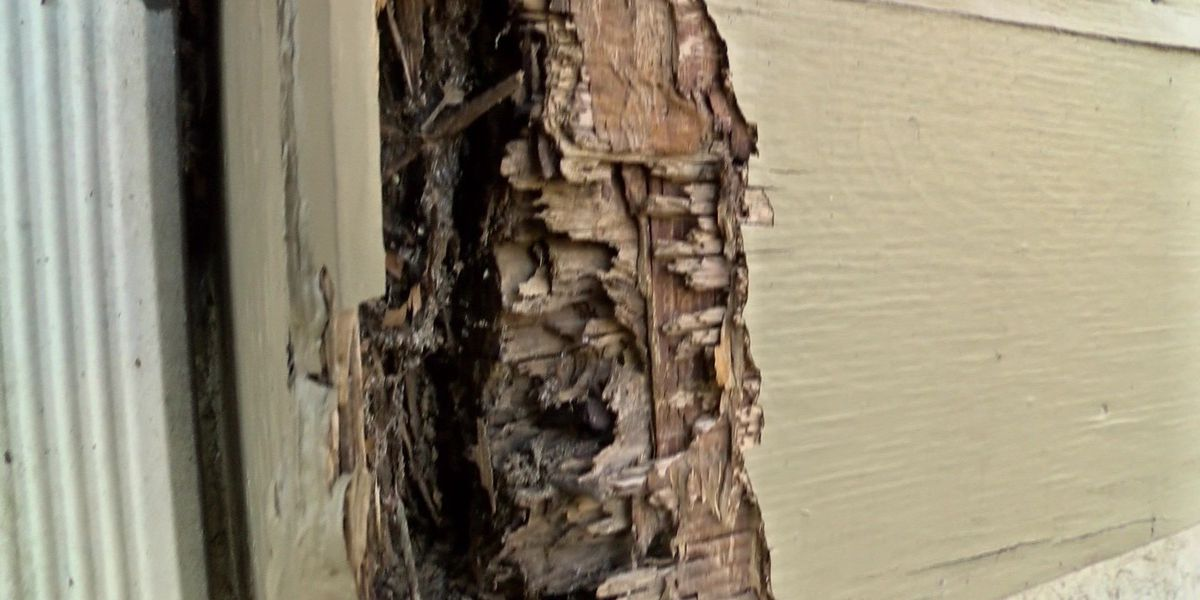 On Your Side: Tenant complains repair requests ignored