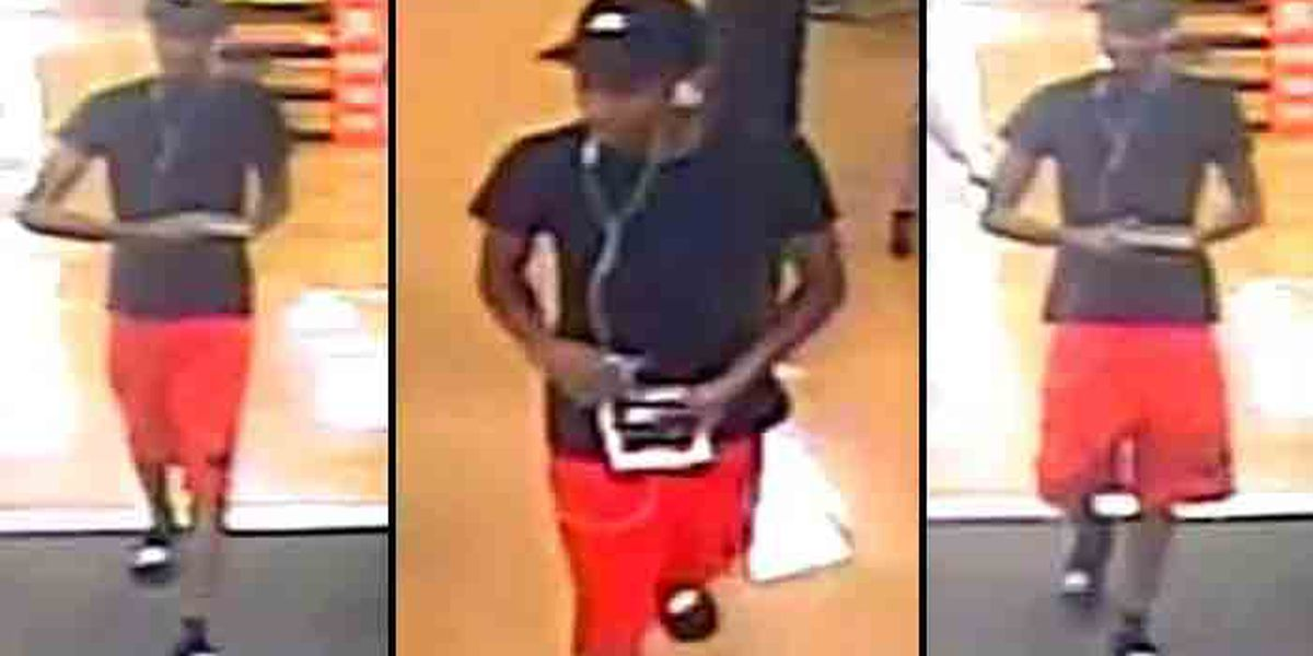 Police search for burglar who used stolen credit cards at Kroger