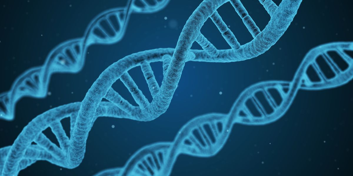 Diving into your DNA: How to choose a genetic health test