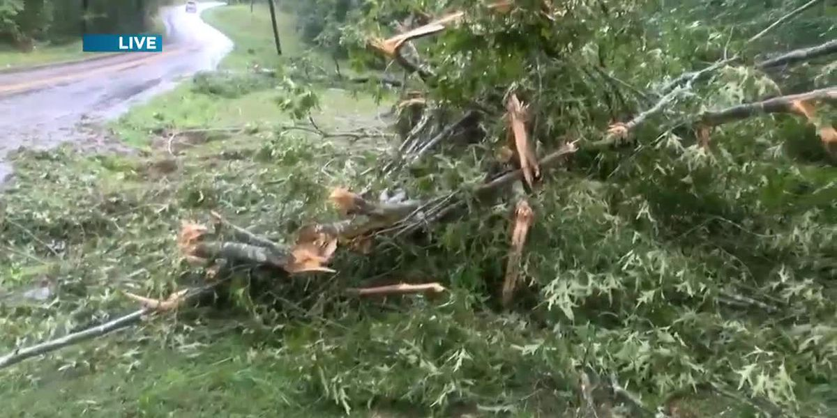 Numerous tornadoes reported in Virginia