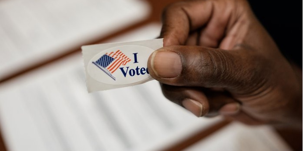 Virginia officials say all voters can cast ballots by mail for May municipal elections