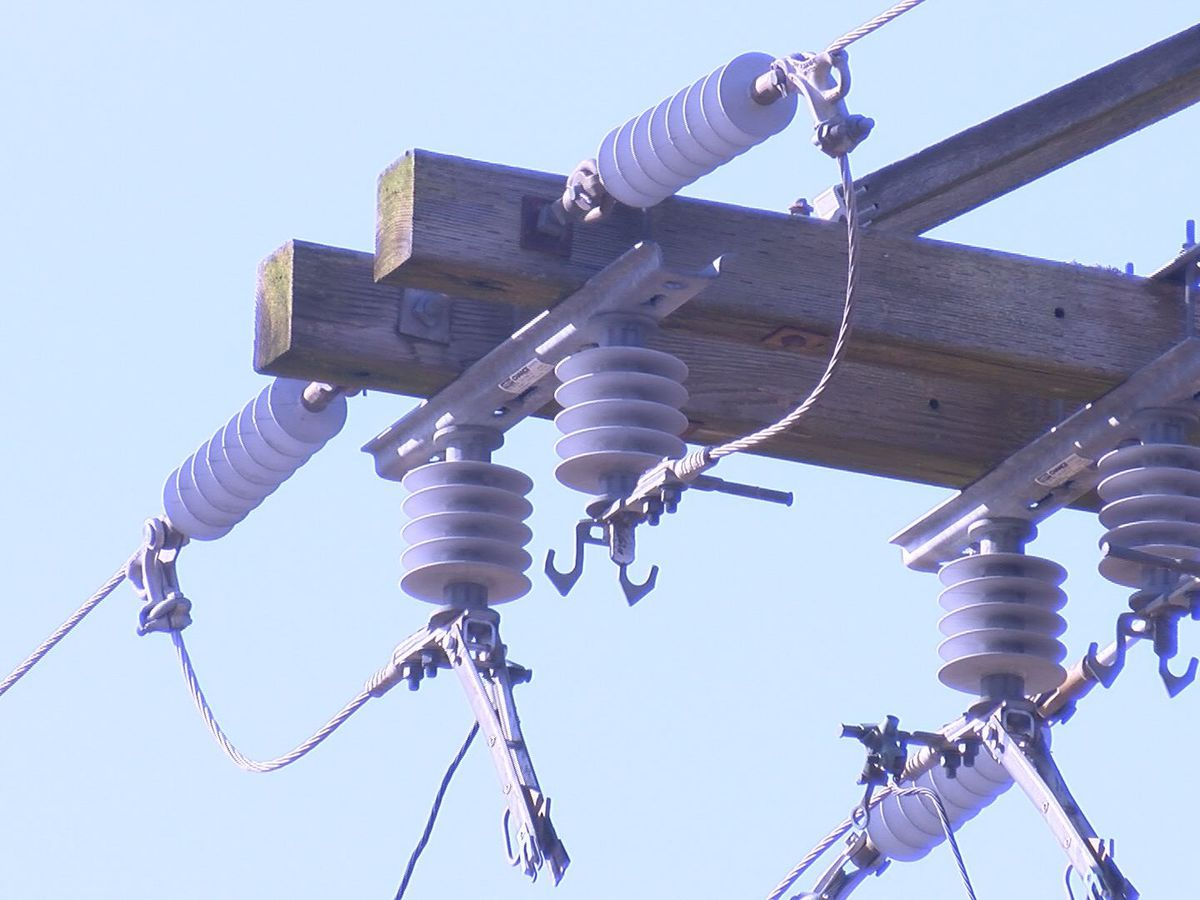 Southside Electric says 60 percent of homes restored in 18-county territory