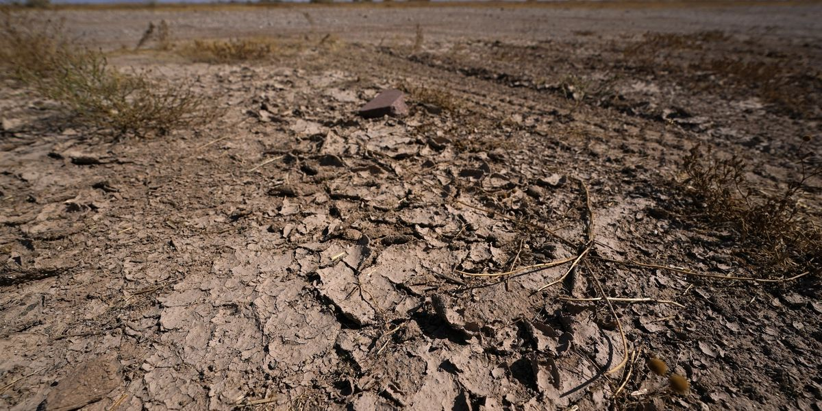 Forecasters: Drought more likely than blizzards this winter