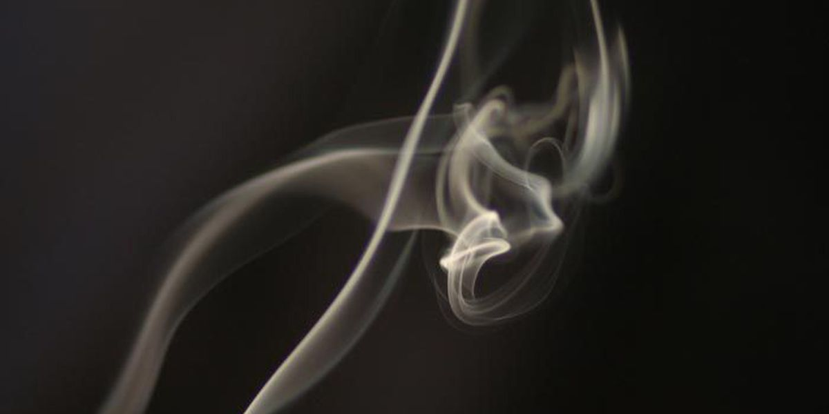 FDA: Third-hand smoke can 'absolutely kill your pet'