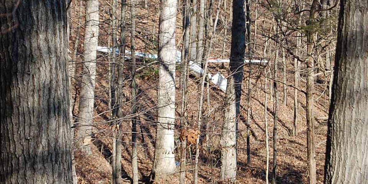 Virginia man killed after crashing plane into trees