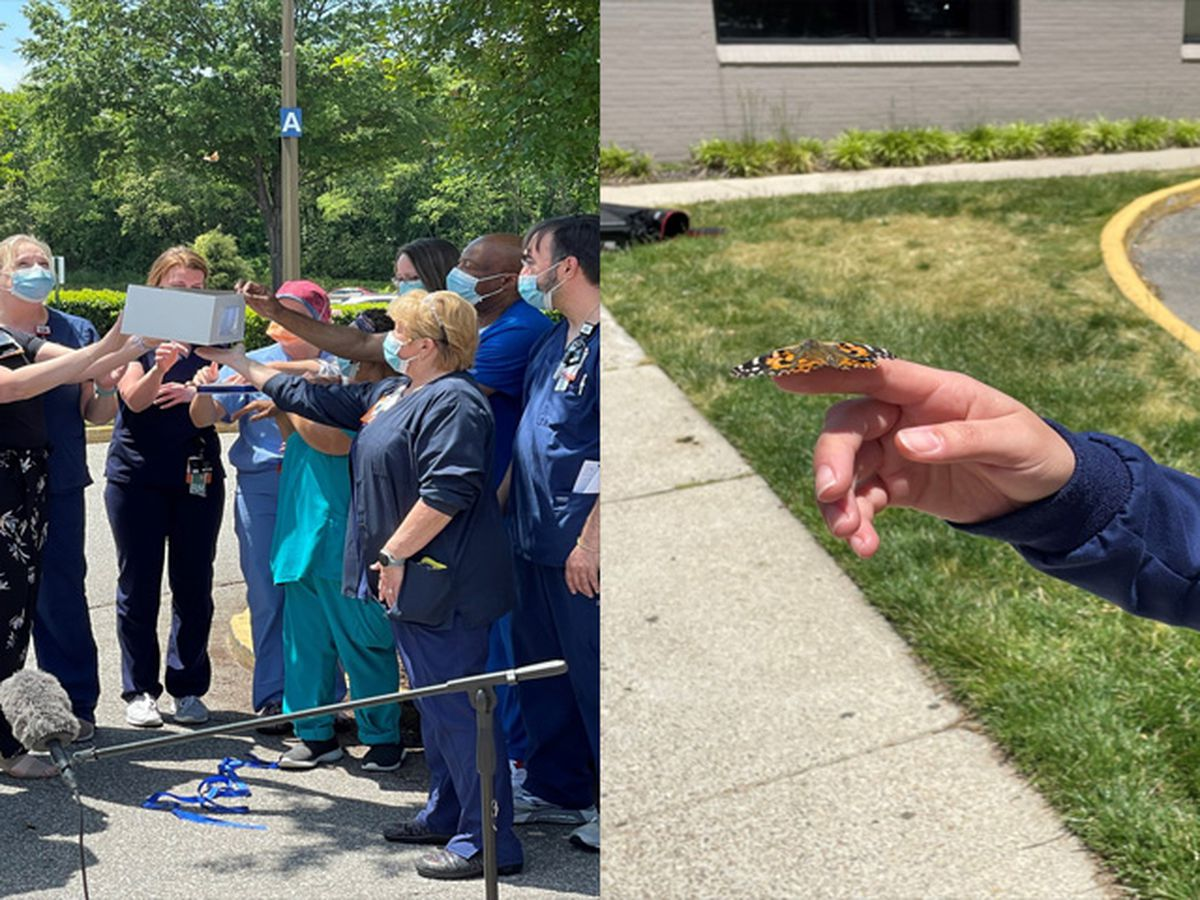 HCA Virginia hospitals honor COVID-19 patients during butterfly release
