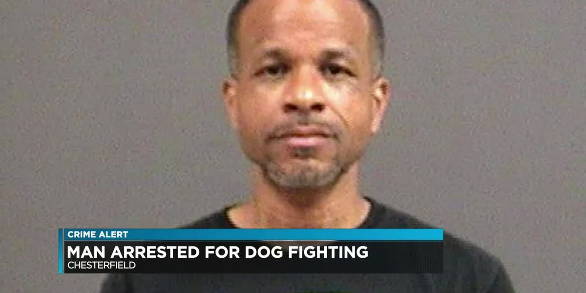 Chesterfield man faces multiple dog fighting, animal cruelty charges