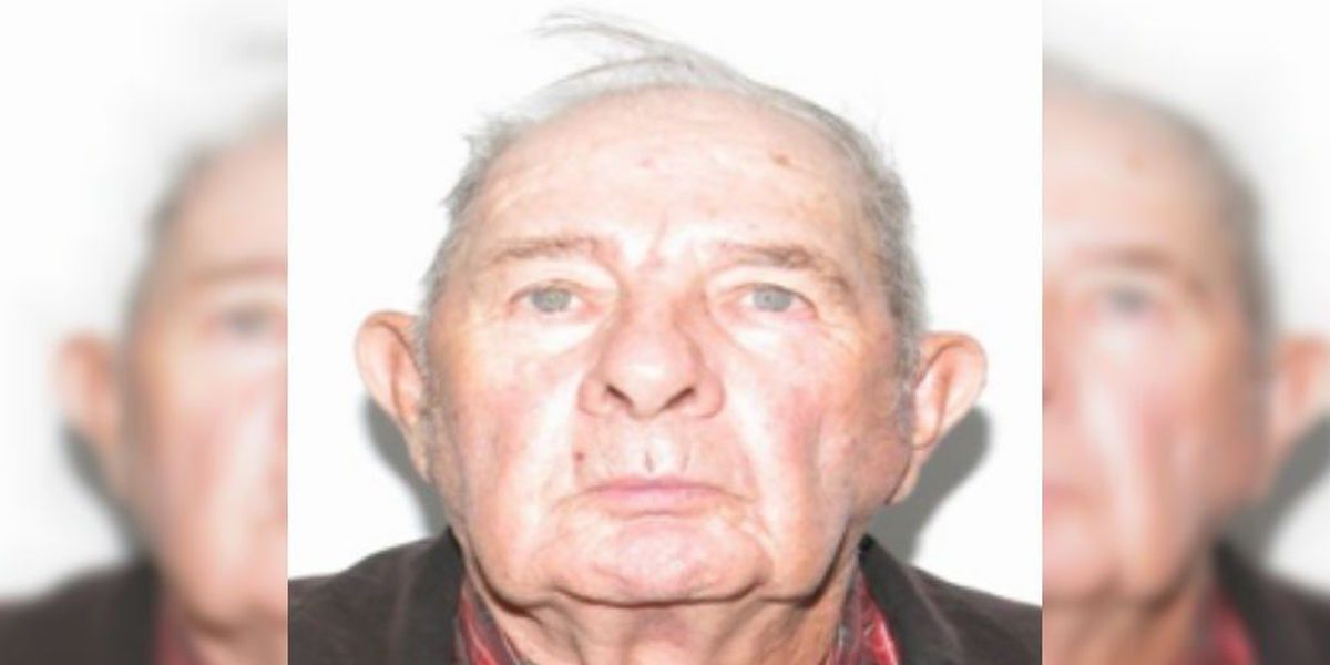 Senior Alert canceled after 87-year-old man found