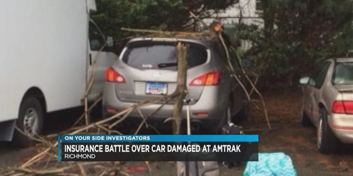 Midlothian family fights with parking company after tree falls on car
