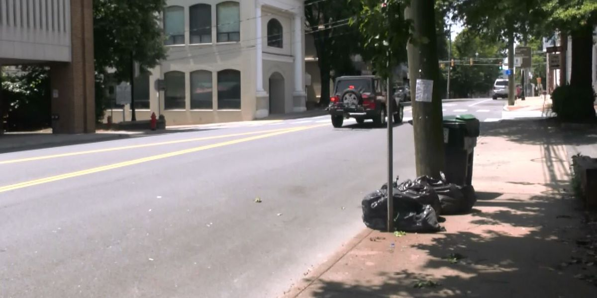 Changing street names in Charlottesville to honor Black Lives Matter Movement proposed