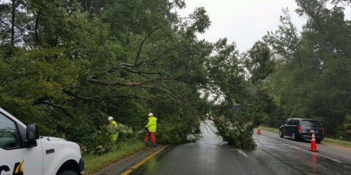 Tree no longer blocking lanes of I-64 in New Kent