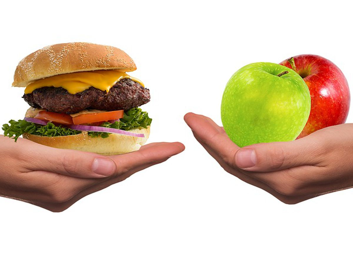 10 common diets! …But do they work?