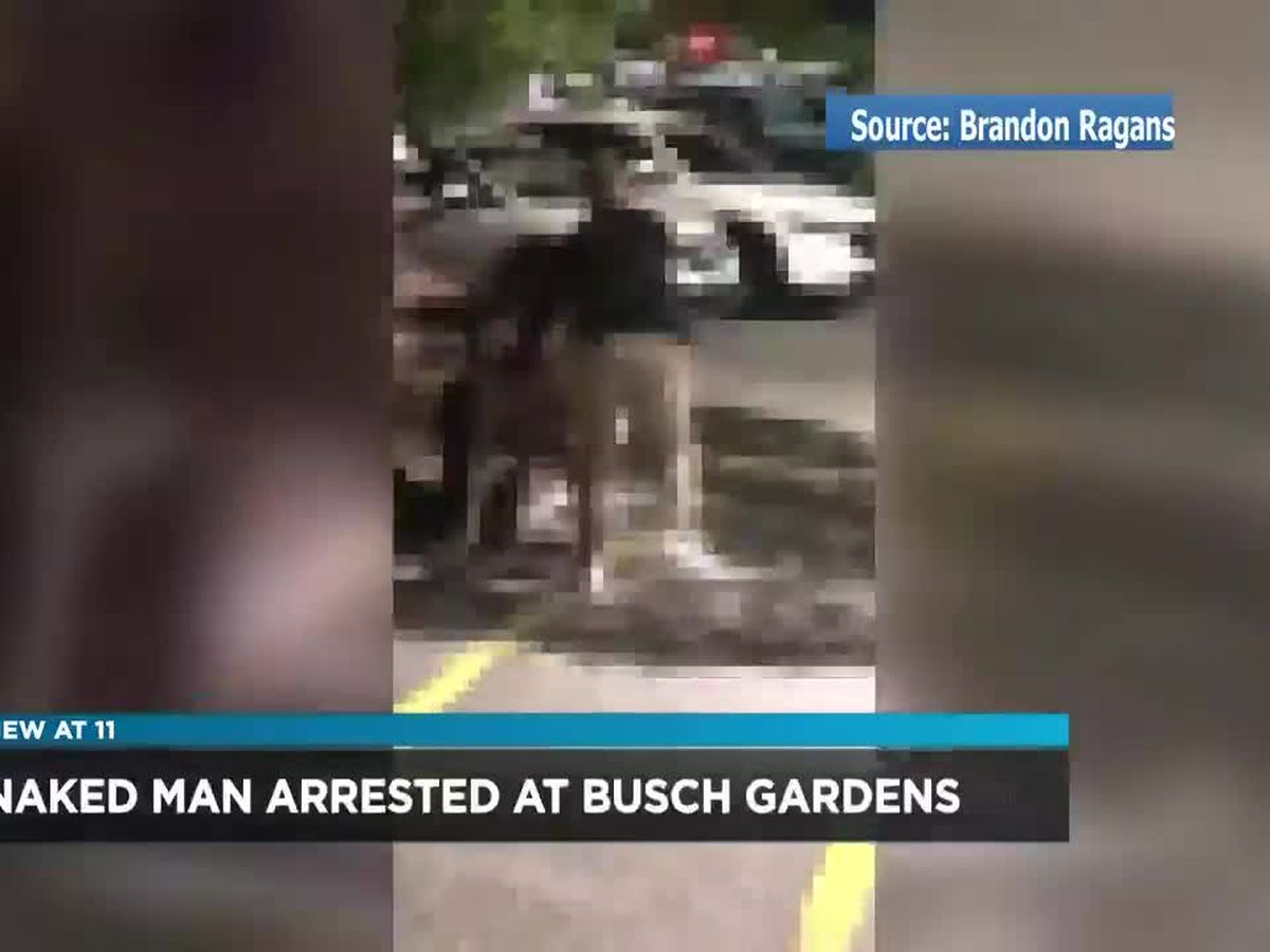 Witness says she couldn't believe her eyes after seeing naked man in Busch Gardens parking lot