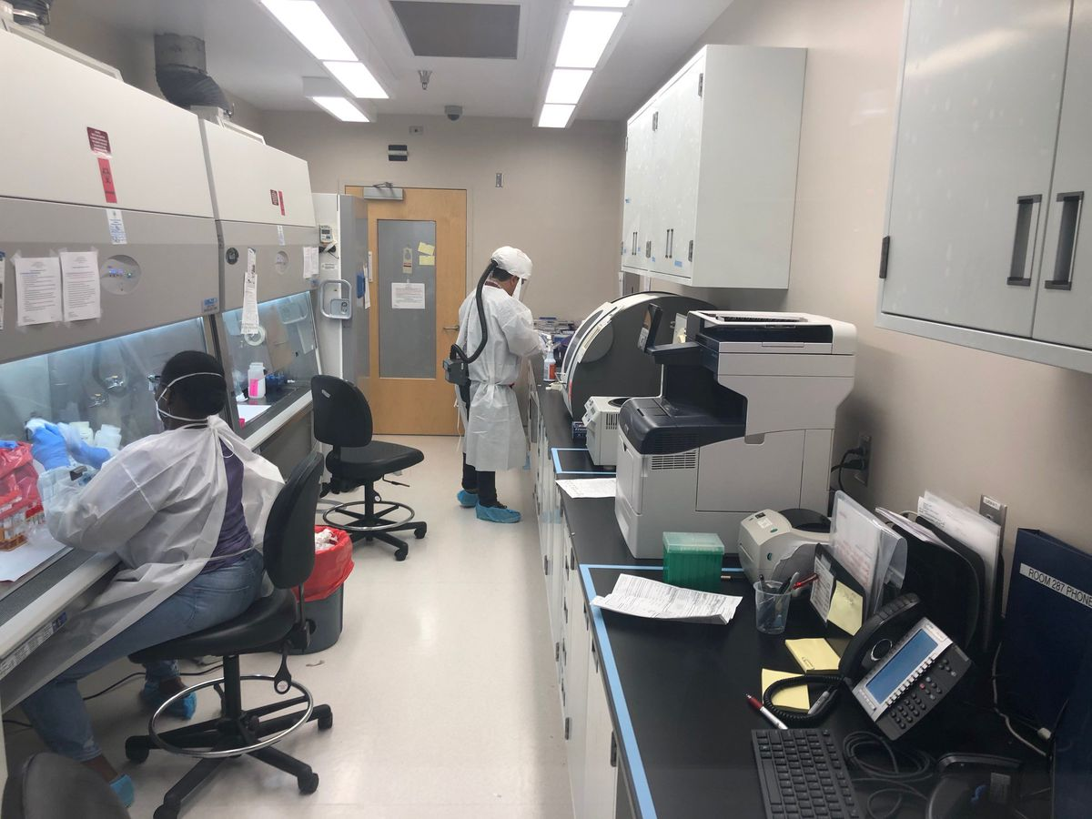 Virginia scientists using genetic technology to get handle on COVID-19 in state