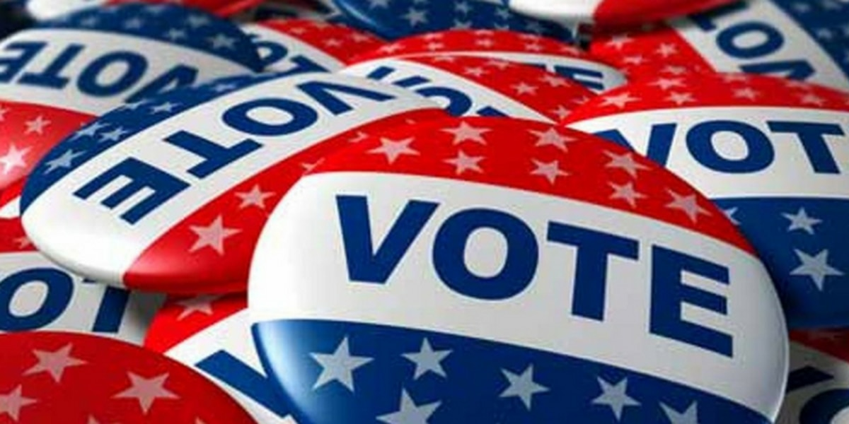 Chesterfield Board of Supervisors approve additional early voting locations