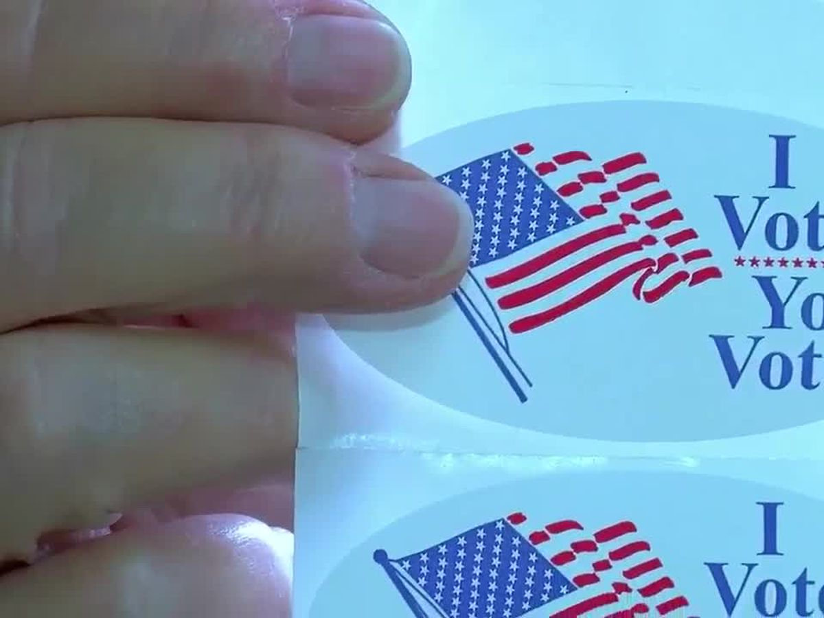 A look at the choices on Virginia's midterm ballots