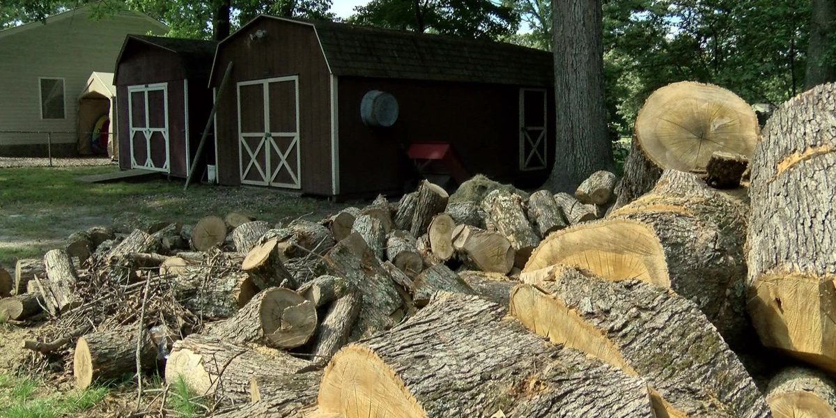 Midlothian woman says tree removal service changed contract, hiked price after job
