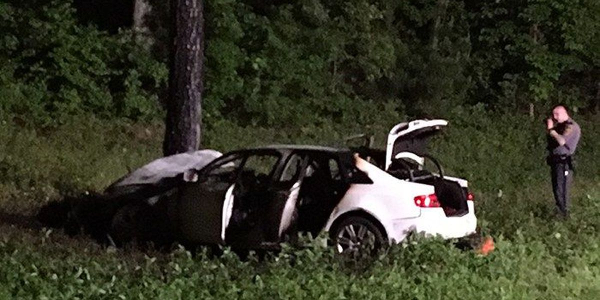 Passenger dies after vehicle strikes tree, catches on fire