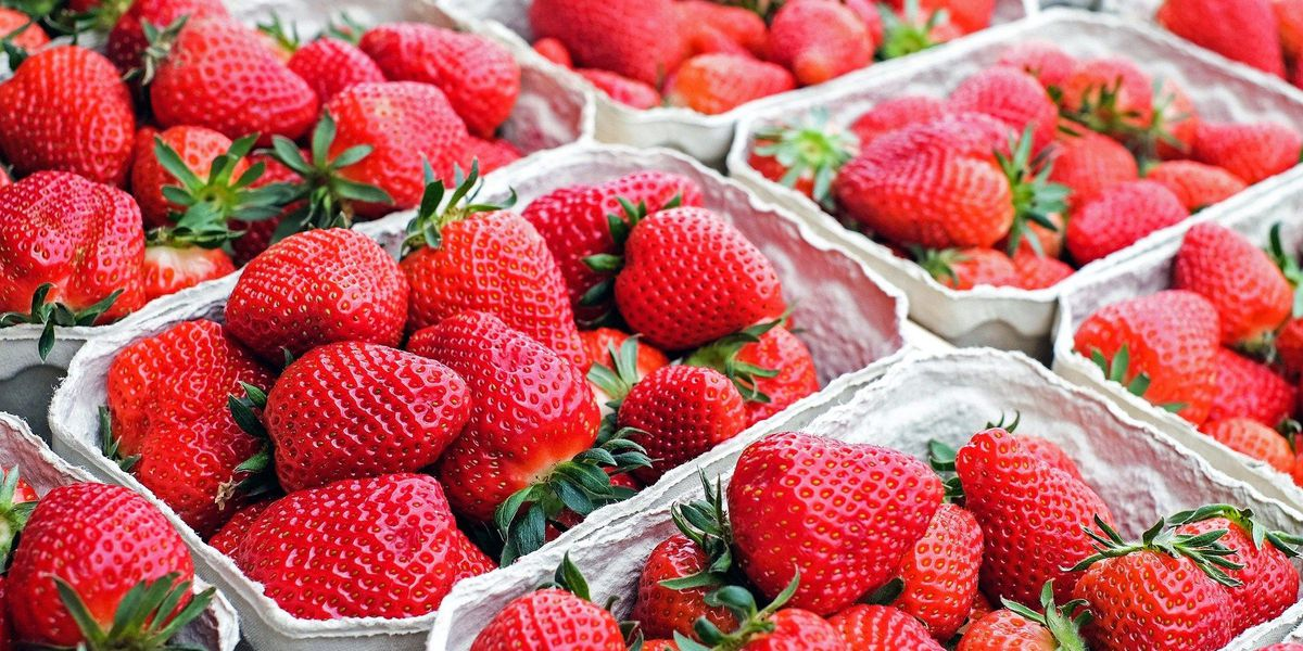 Ashland Strawberry Faire this weekend