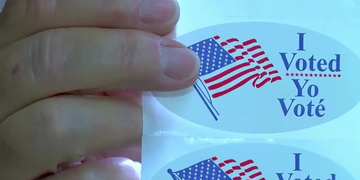 What's on your ballot? Voting underway in Central Virginia