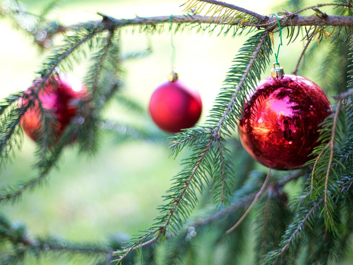 Henrico offering 4 locations to recycle Christmas trees