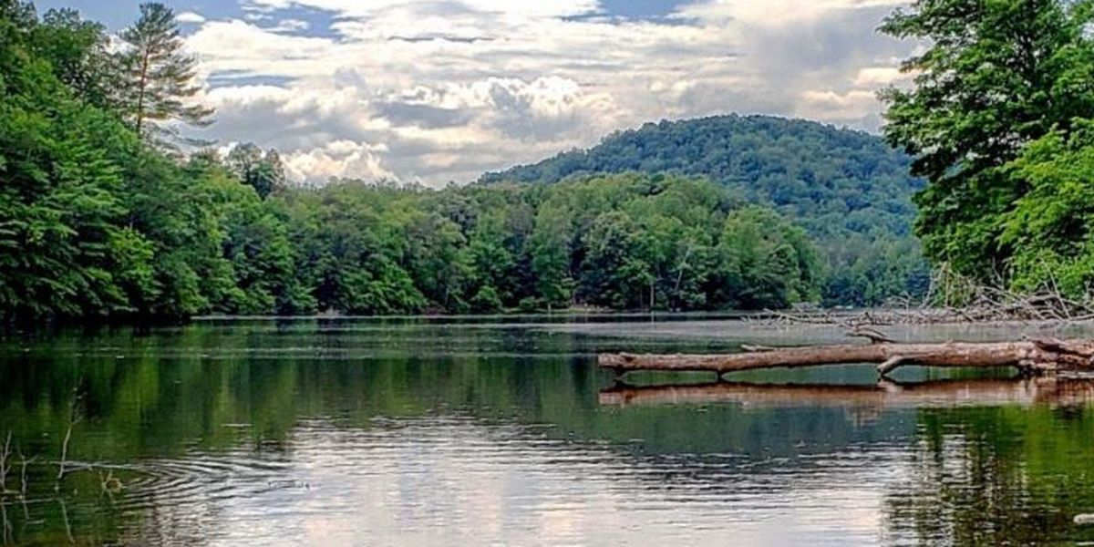 Ditch the stores and #OptOutside in a Virginia state park