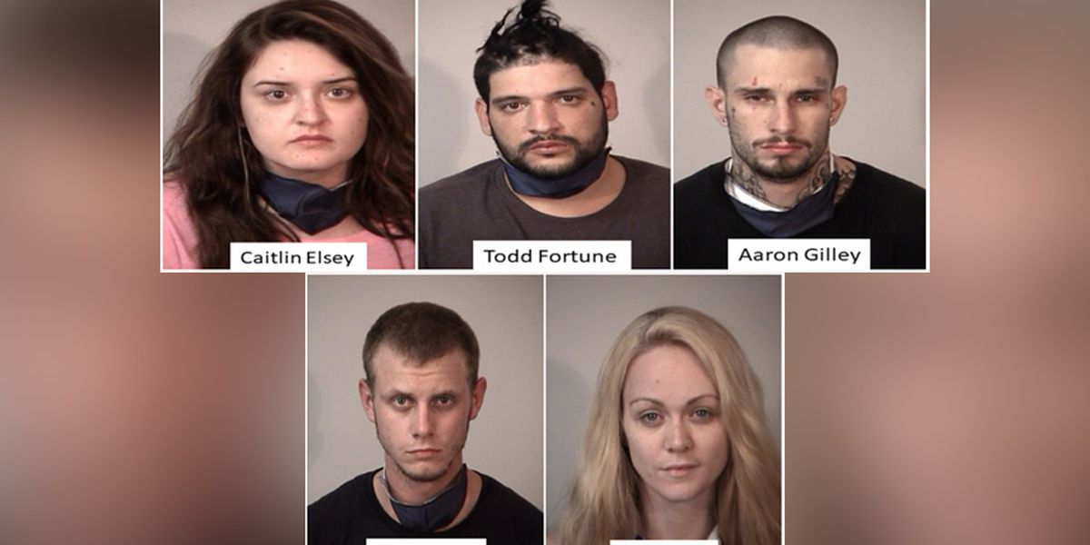 Traffic stop leads to 5 people being arrested by deputies