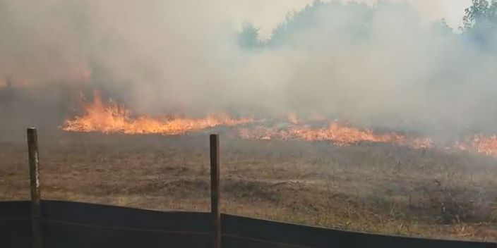 Dry, hot weather raises wildfire concerns