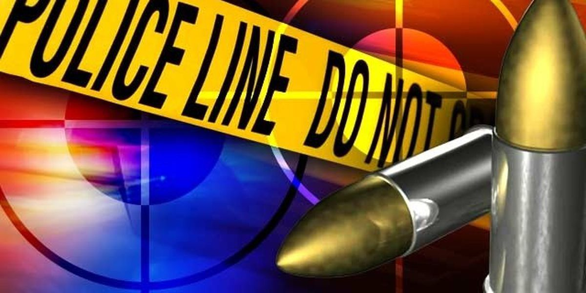 Two men killed in Fourth of July shooting in Spotsylvania County