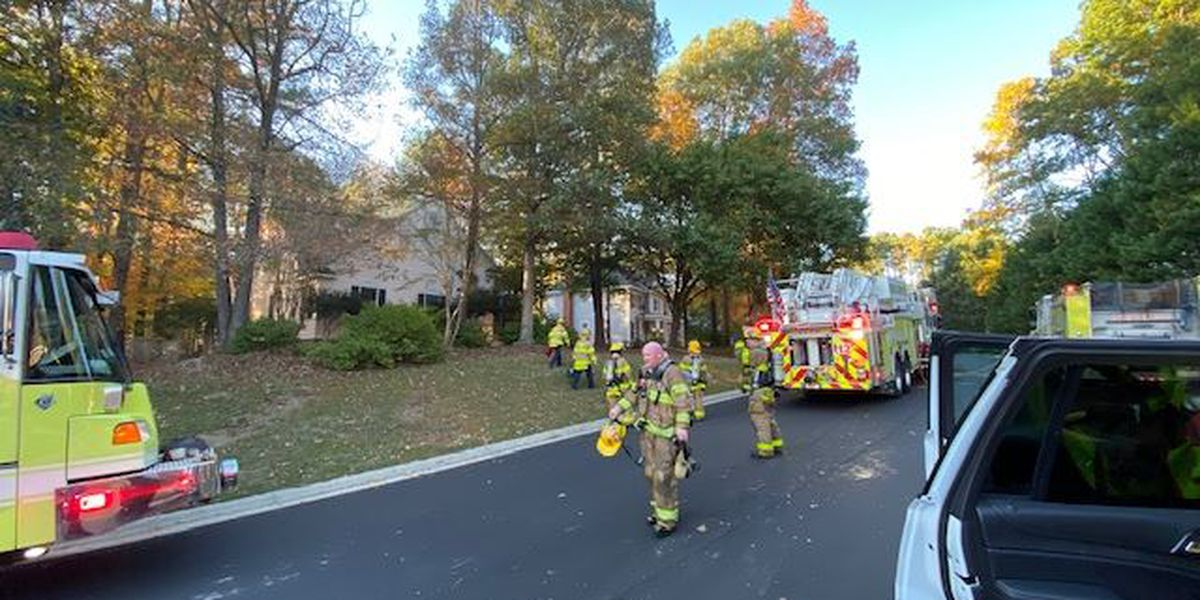 Short Pump family loses 2 dogs, cat in house fire