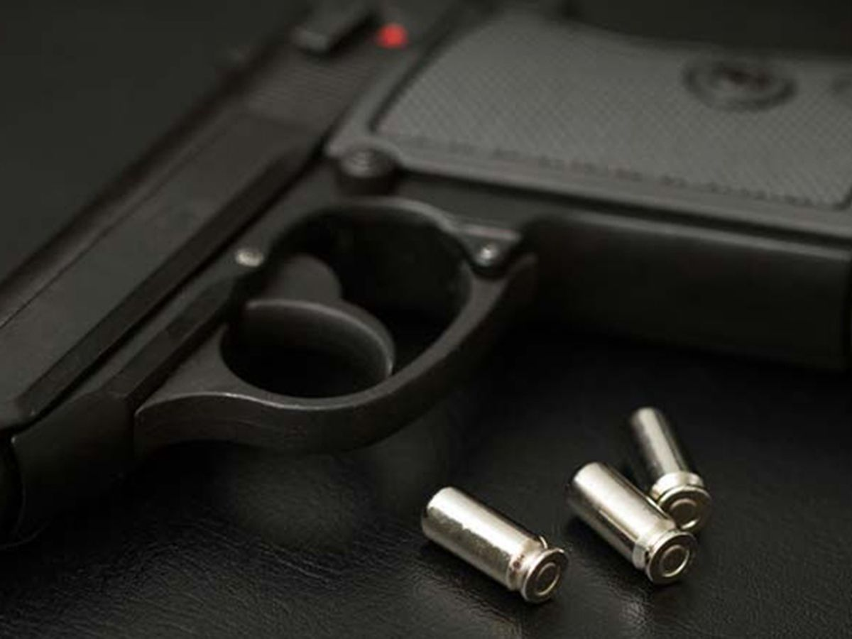 Virginia passes bill to ban firearms at state Capitol