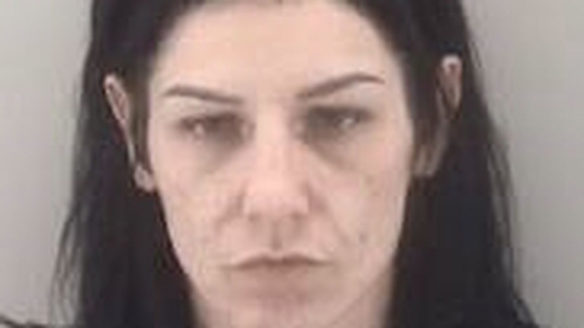 Woman charged with discharging firearm on Lee Bridge
