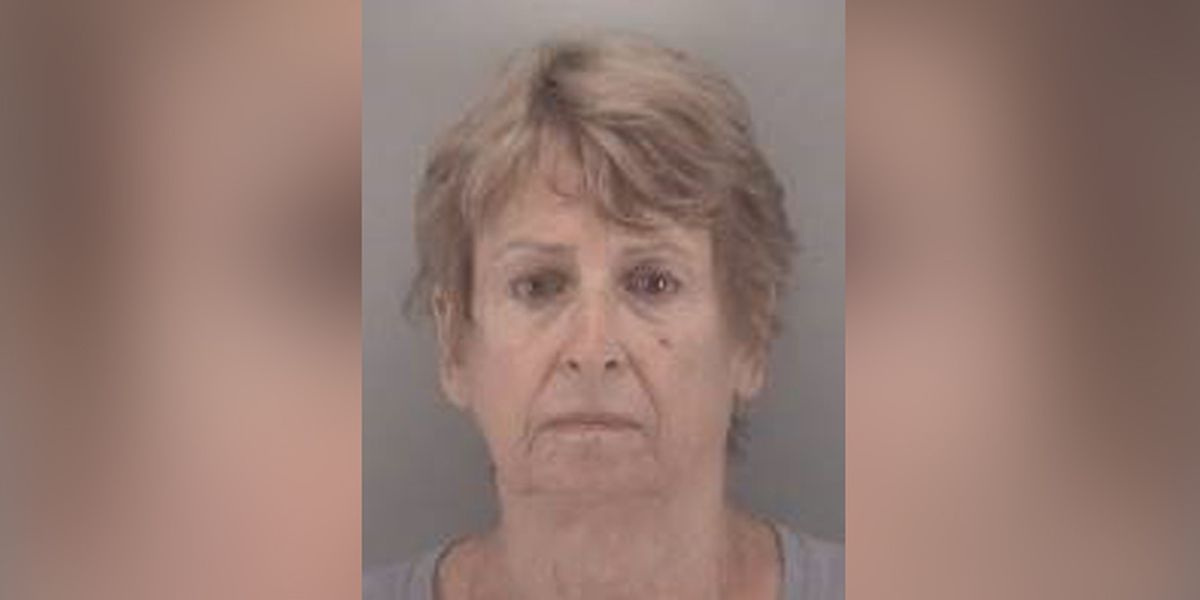 Woman charged in fatal six-vehicle accident