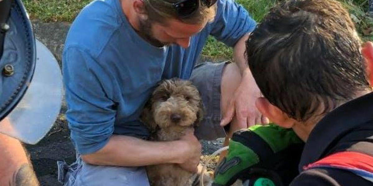 Family, dog unharmed in Goochland house fire