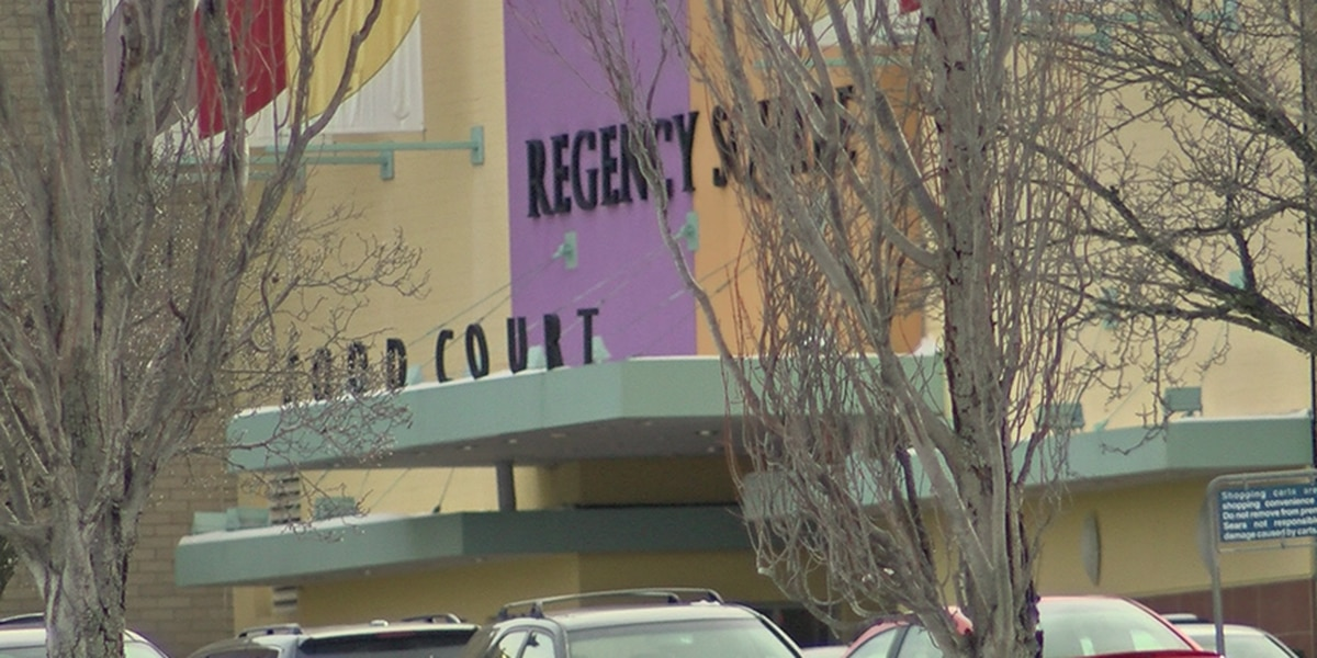 Plans call for new stores, face-lift at Regency Square Mall