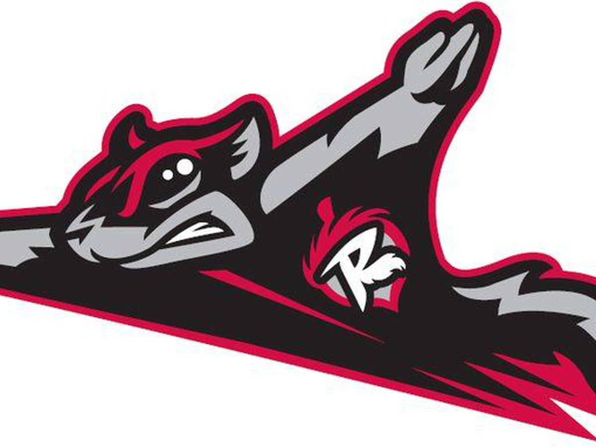 Richmond Flying Squirrels reveals name of new beer