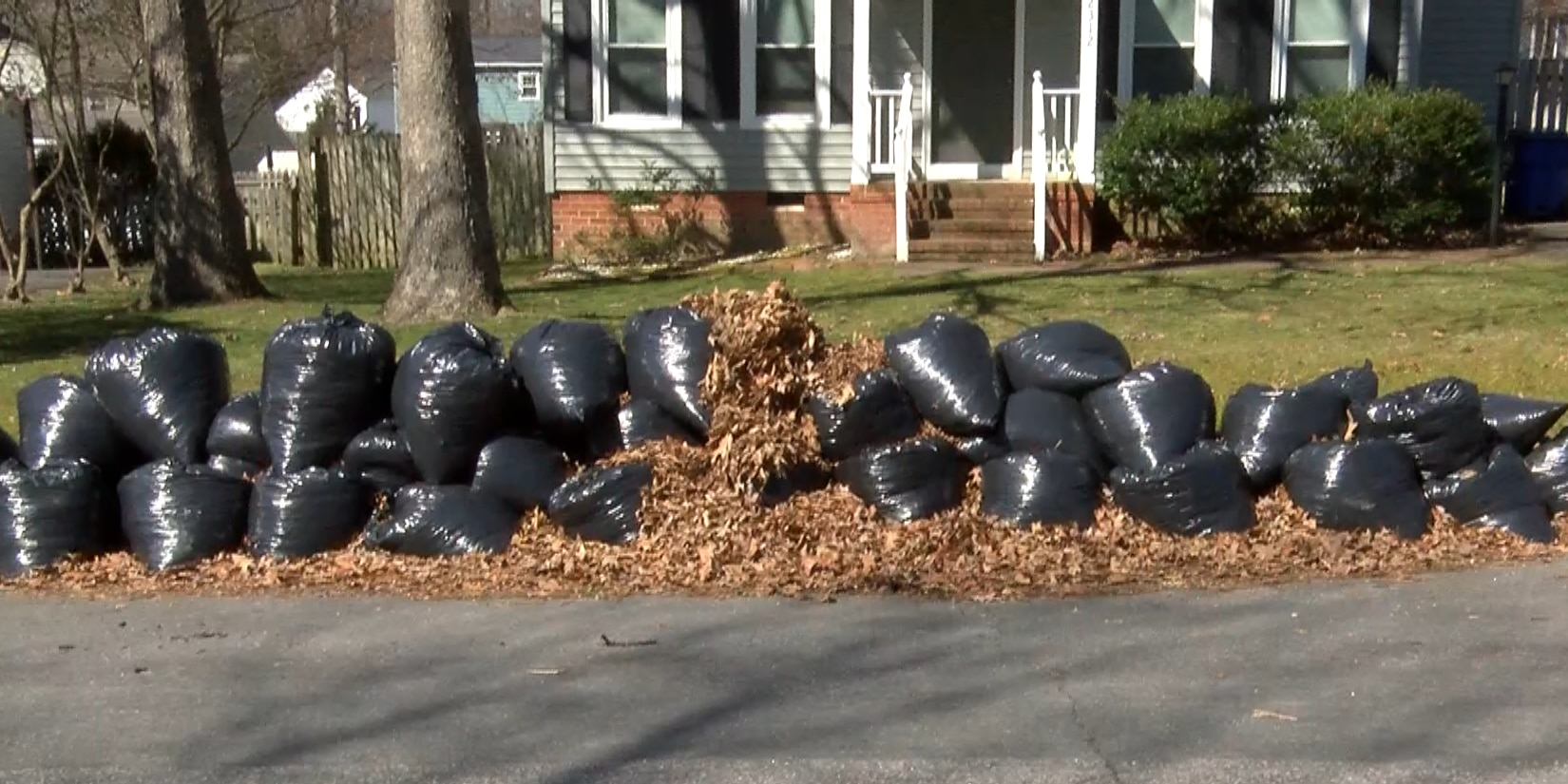 Neighbors frustrated over lack of bagged leaf collection