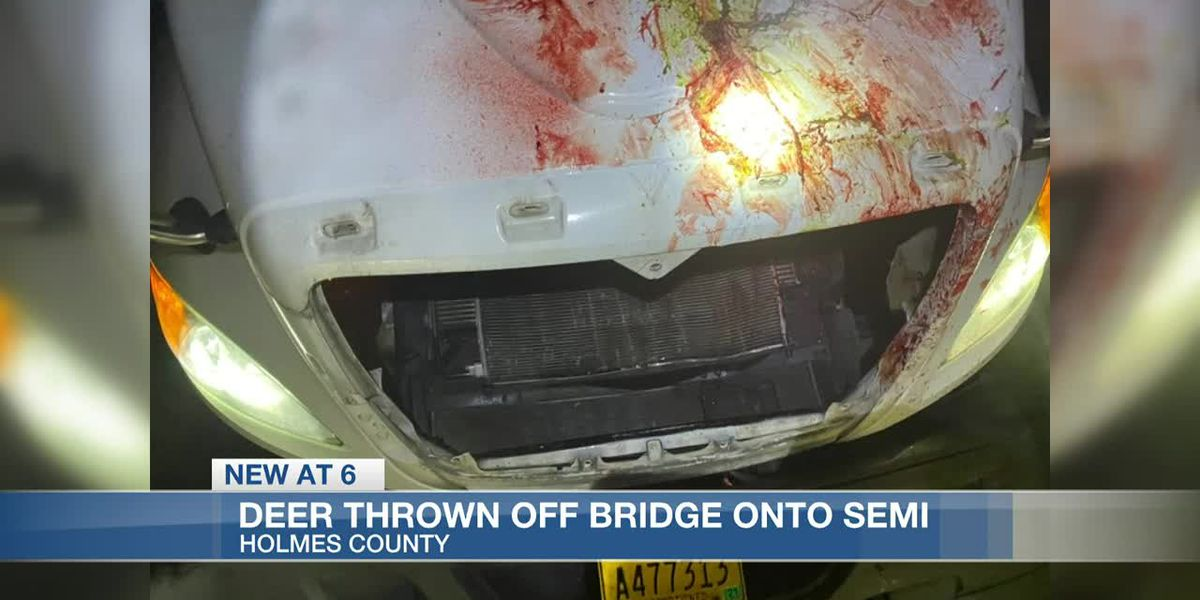 Deer thrown off I-55 bridge hits semi-truck; Those involved face multiple charges
