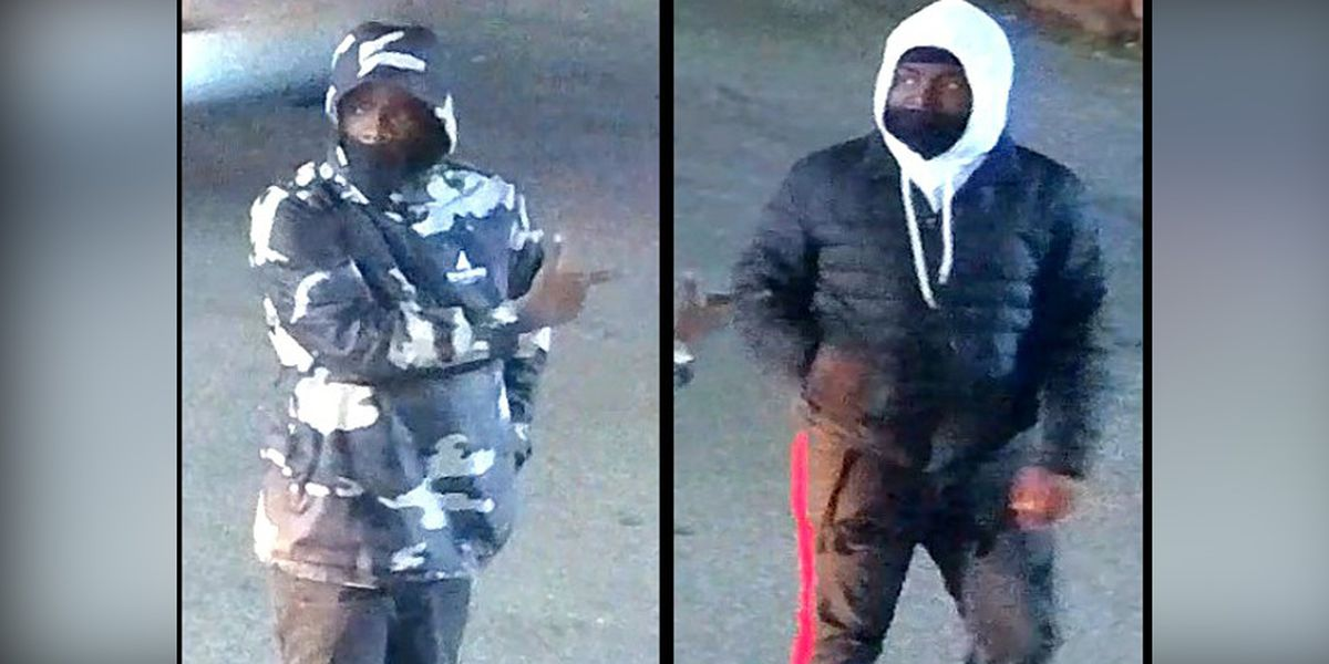 Police search for suspects in Richmond vehicle theft
