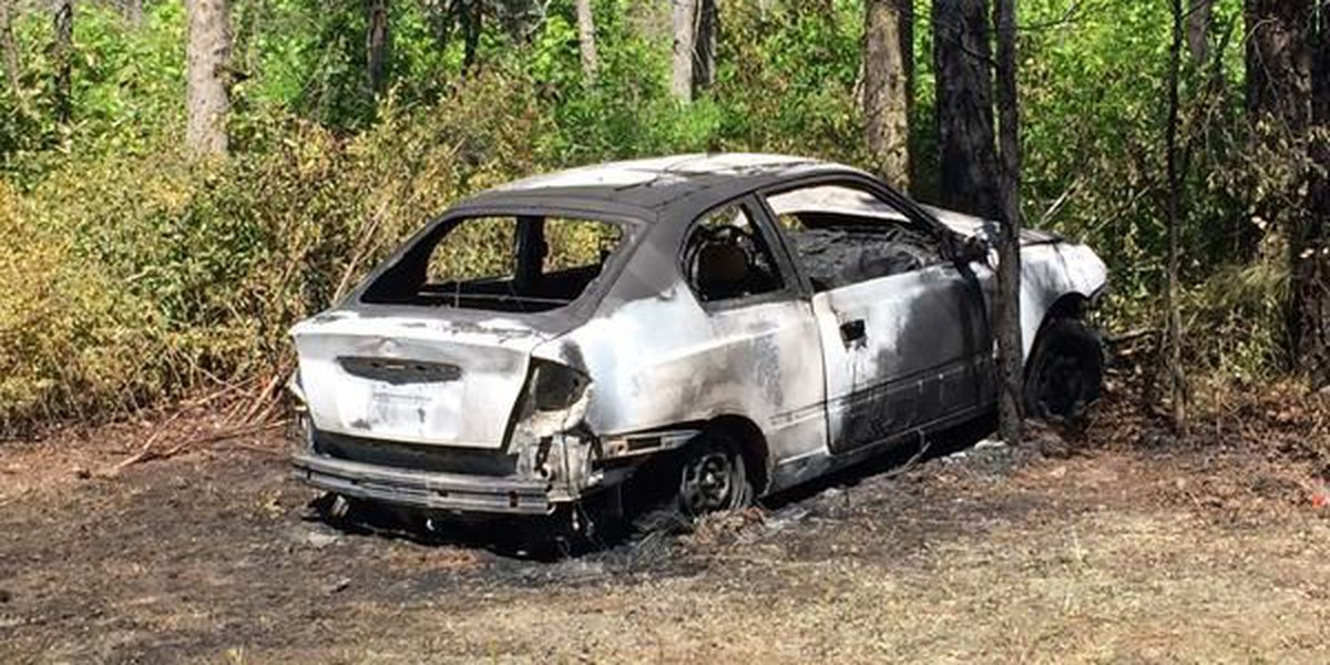 Driver identified in fatal Courthouse Road crash, car fire