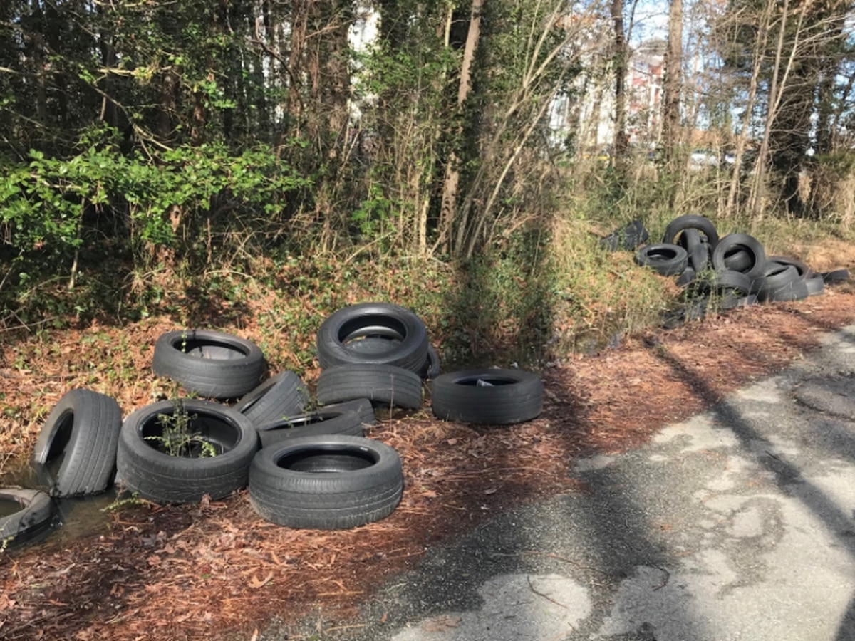 Police investigate illegal dumping behind apartments