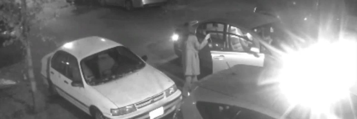 Surveillance Video: Police looking for suspects in hit-and-run